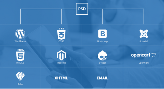 psd to html conversion service the latest trends in the world of web